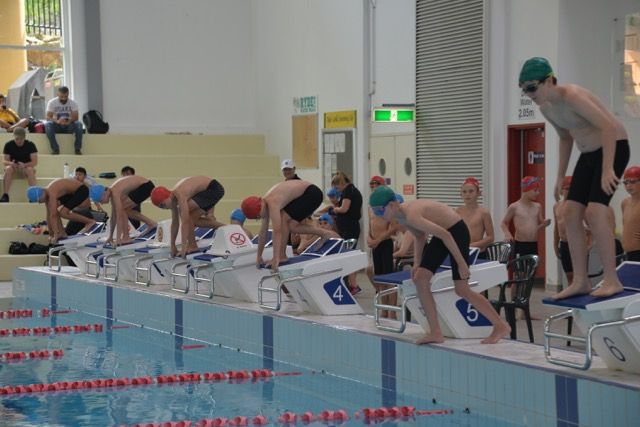 The Ncp Schools Inter House Swimming Carnival Wyvern