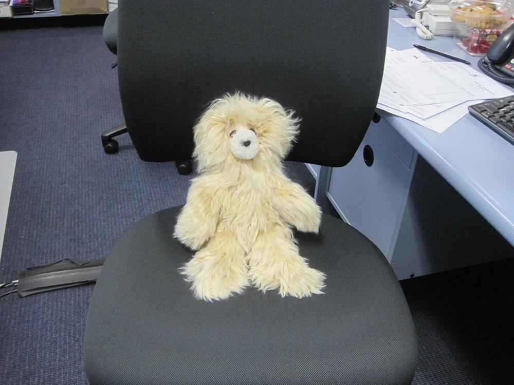 Kindy's Teddy Bear Picnic Day   Wyvern